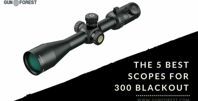 The Best 5 Scopes for .300 Win Mag