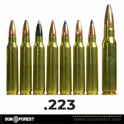 .223 Bullet