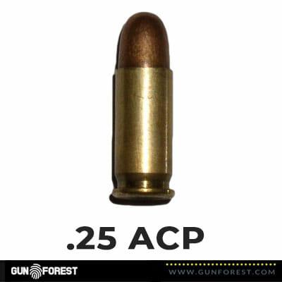 .25 ACP Bullet