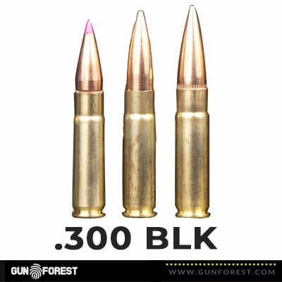 .300 BLK Bullet (2)