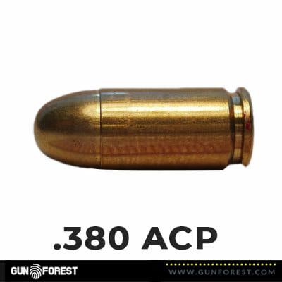 .380 ACP Bullet