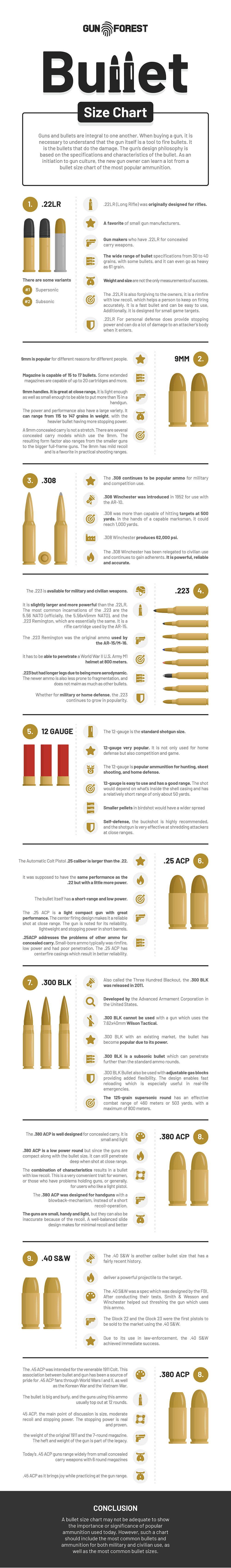 Bullets Size Chart Infographic